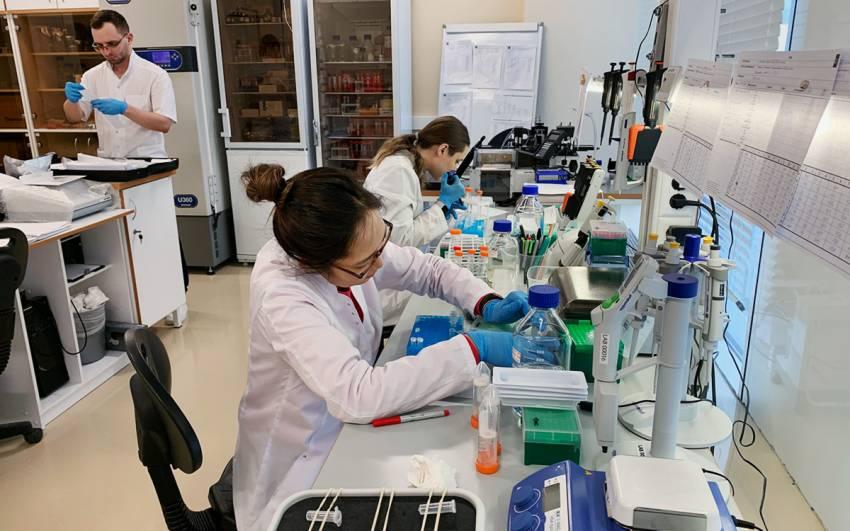 В России зарегистрировали экспресс-тест для привившихся от коронавируса