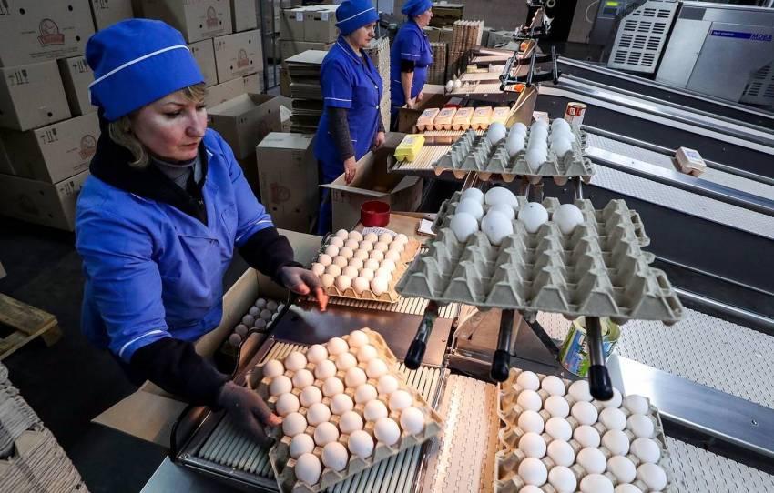 Производители мяса птицы и яиц договорились о сдерживании цен